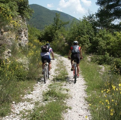 Escursione guidata in mountain bike con gita in eco battello - Terni