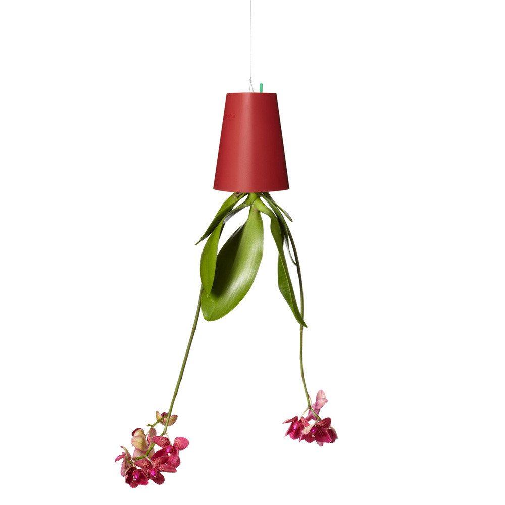 Sky Planter- Der etwas andere Blumentopf