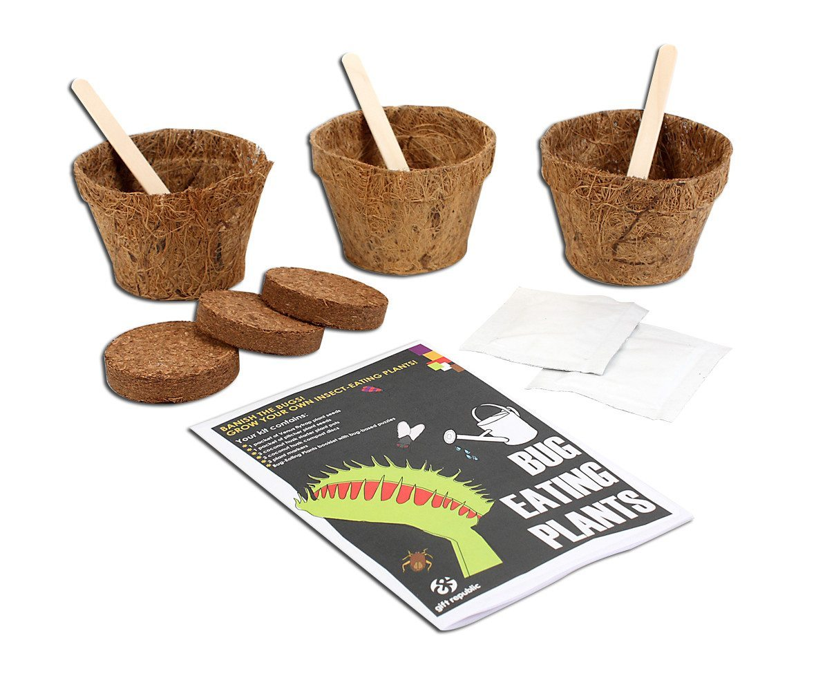 Sow & Grow Käferfressende Pflanze Set