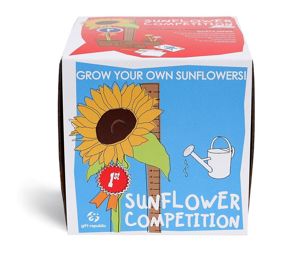 Sow & Grow Sonnenblumenwettbewerb