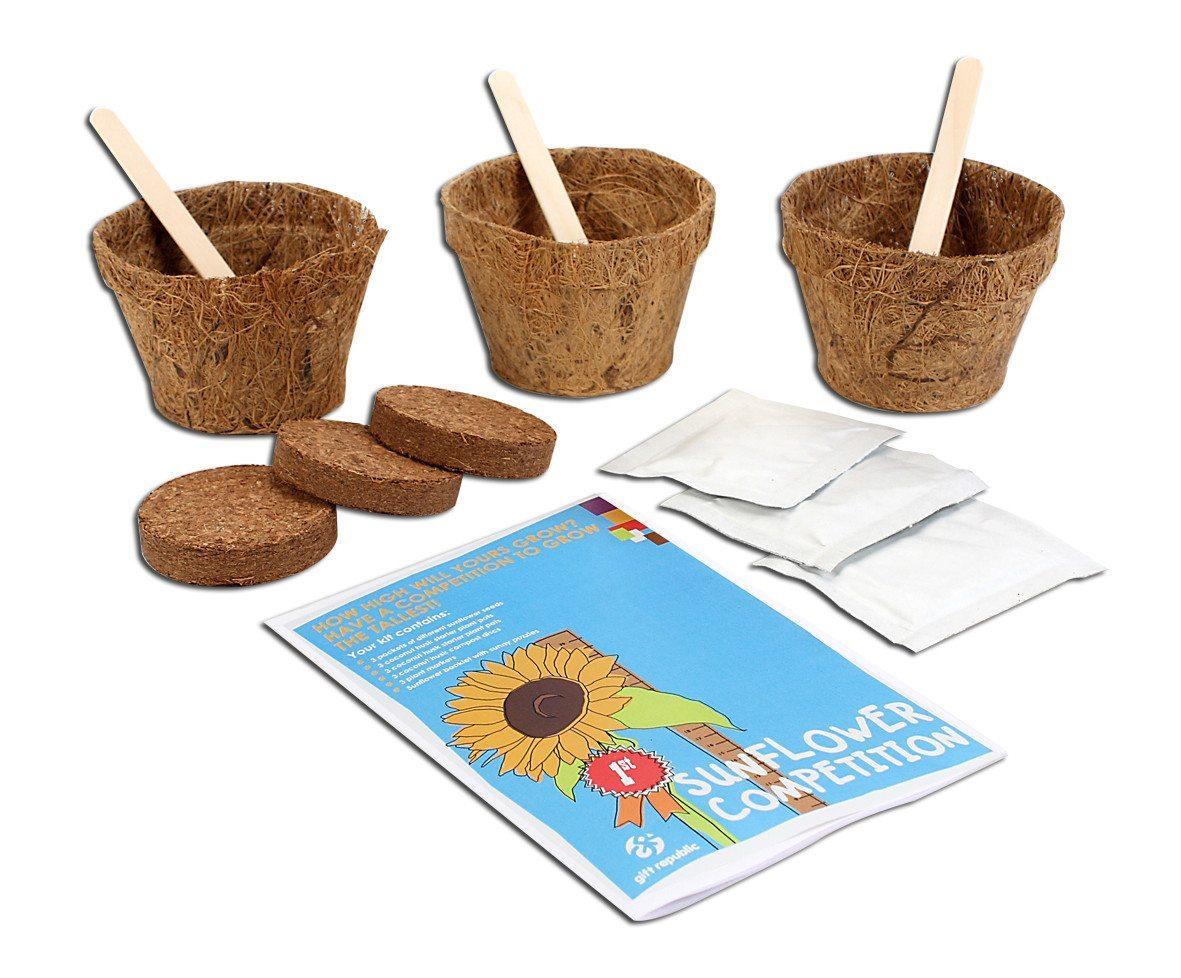 Sow & Grow Sonnenblumenwettbewerb Set