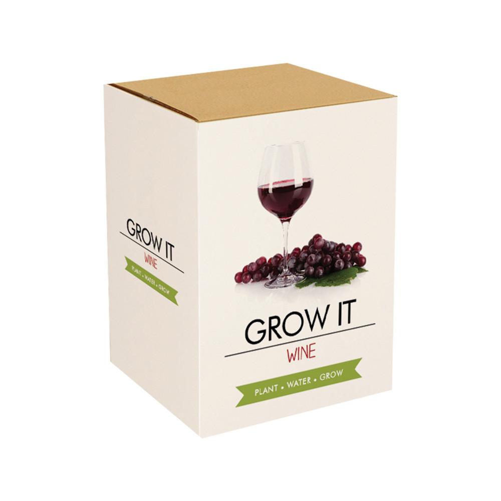 Wein selber anbauen - Das Starterset
