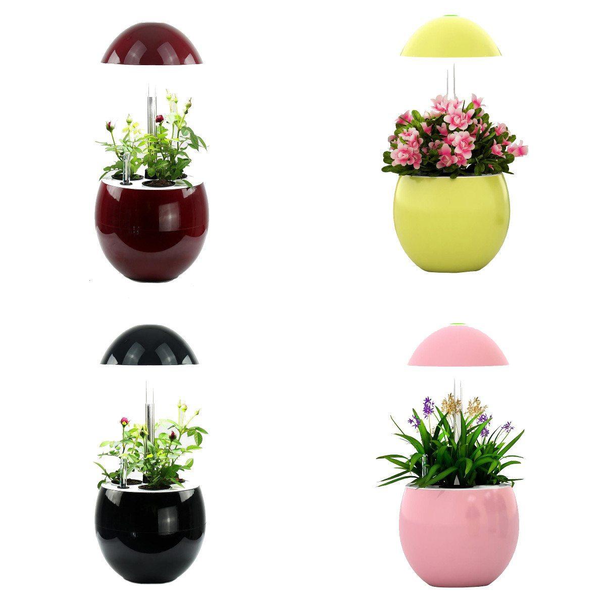 Il vaso autonomo