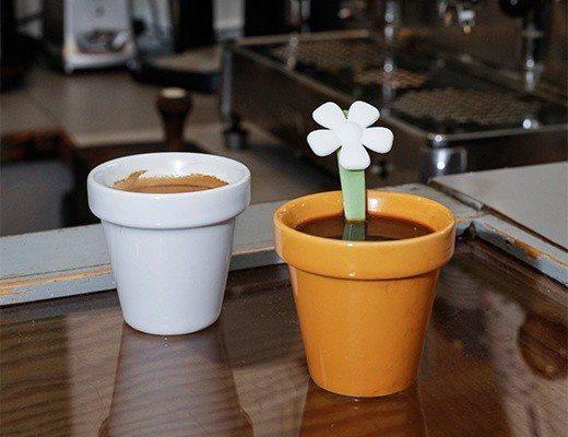 Set due tazzine + cucchiaino - Vasi di fiori