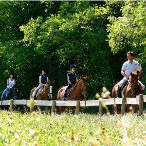 Battesimo della sella: la prima volta a cavallo - Mantova