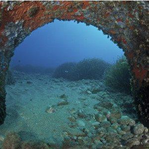 Corso di diving con passaporto subacqueo - Liguria