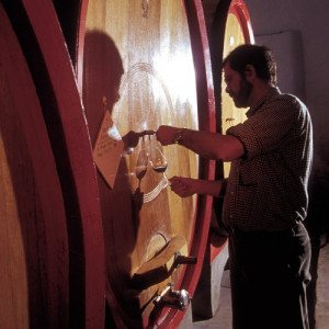 Degustazione e visita a cantina - Almenno San Salvatore (BG)