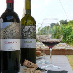 Degustazione vini e prodotti tipici - Castellabate