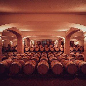 Degustazione vino in cantina con visita per 2 persone - Marsala