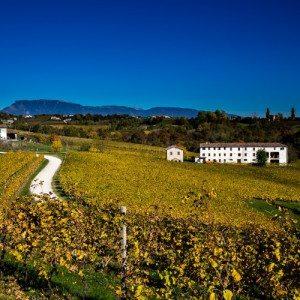 Degustazione vino per due persone - Valdobbiadene, Treviso