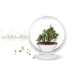 """Der """"musikalische"""" Blumentopf mit Soundsystem"""