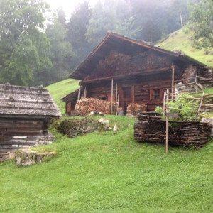 Escursione di gruppo di Nordic Walking (min. 4 persone) - Trentino