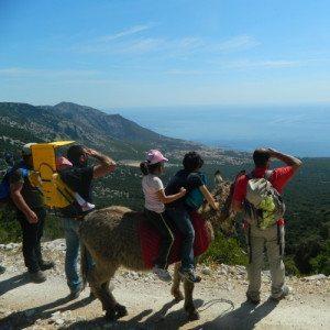 Escursione di mezza giornata con gli asini - Sardegna