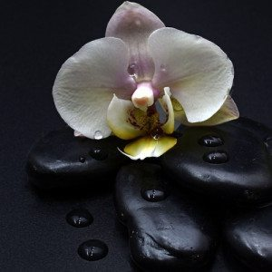 Il benessere delle pietre laviche: Massaggio hot Stone - Piacenza