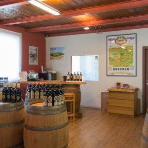 Museo del vino e degustazione per due - Castagnole Monferrato