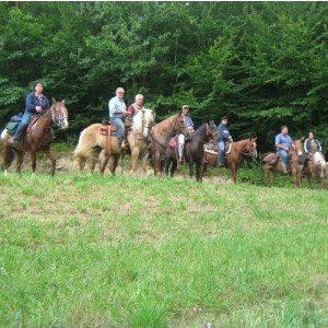 Passeggiata storica a cavallo per due persone - Castel d'Aiano
