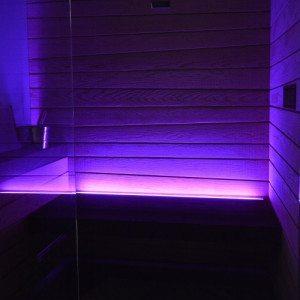 Percorso spa al gusto di betulla: sauna e massaggio - Piacenza