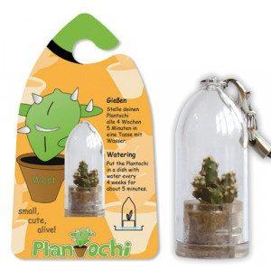 Plantochi - lebende Schlüsselanhänger