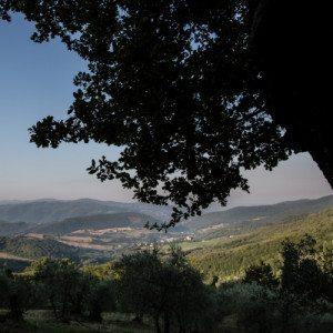 Soggiorno romantico trai i colli toscani - Firenze