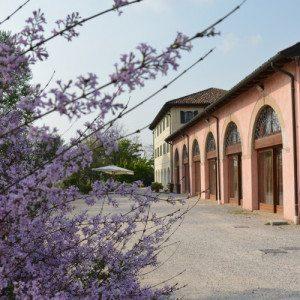 Soggiorno con cena - Ponte di Piave, Treviso