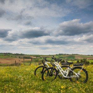 Tour paesaggistico in bici nel Monferrato - Alessandria