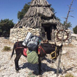Trekking con gli asini - Sardegna