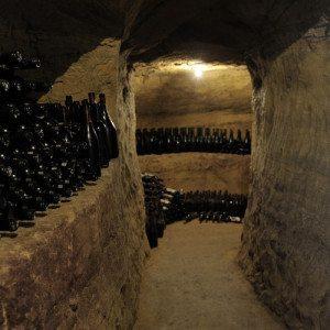 Visita in cantina e degustazione per due - Castagnole Monferrato